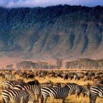 Top Things To Try In Tanzania This Year